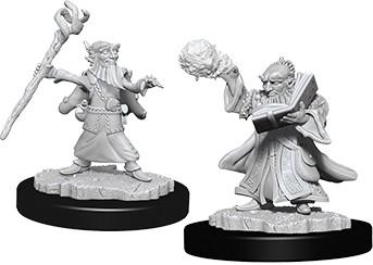 Male Gnome Wizard