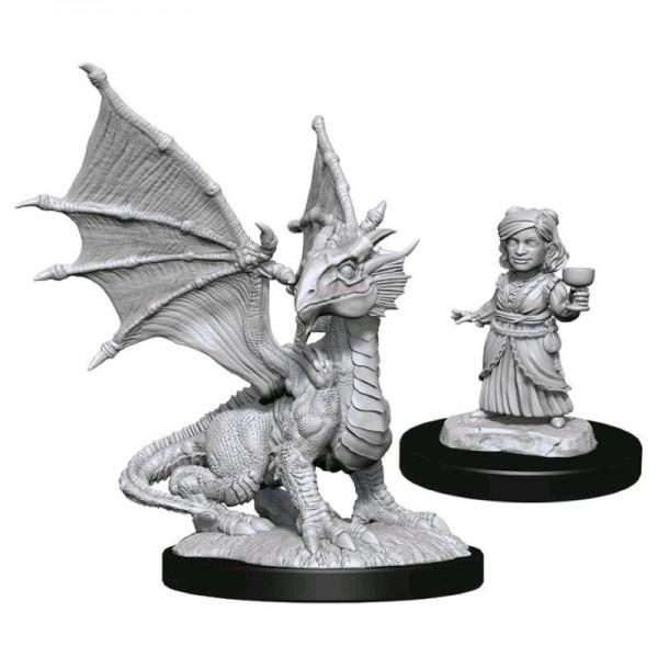 Silver Dragon Wyrmling & Halfling Dragon Friend